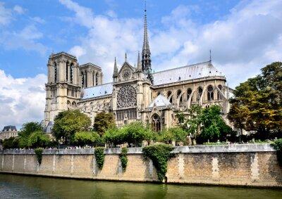 Fototapeta Katedra Notre-Dame w Paryżu