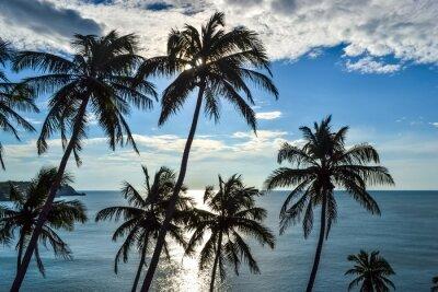 Fototapeta Klify, Drzewa i Morze Wody Green South Goa, Indie
