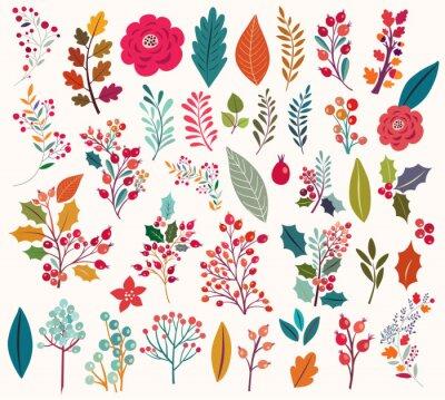 Fototapeta Kolekcja kwiatów i liści