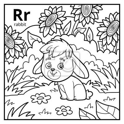 Kolorowanka Bezbarwny Alfabet Litera R Królik Fototapeta