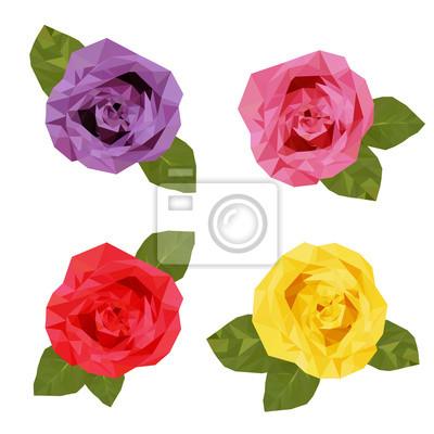 Fototapeta Kolorowe Cztery Róże wielokąta wektor