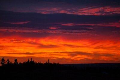 Fototapeta Kolorowe niebo na wschodzie słońca
