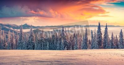 Fototapeta Kolorowe zimowe wschody i zachody w górach.