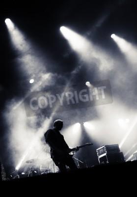Fototapeta Kołysać scenie koncertowej. Gitarzysta gra na gitarze elektrycznej.