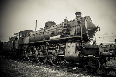 Fototapeta Koń żelaza