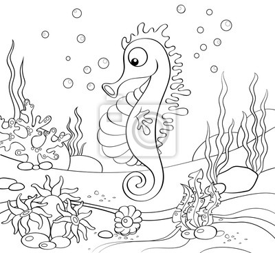 Konik Morski Podwodny Swiat Czarno Biala Ilustracja Dla