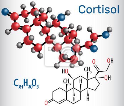 kortyzol i montaż
