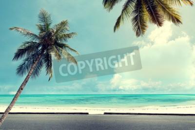 Fototapeta Krajobraz charakter rocznika tle palmy kokosowe na tropikalnej plaży błękitne niebo z promieni słonecznych w godzinach porannych w lecie, retro efekt filtra