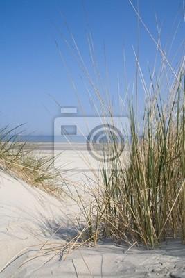 Fototapeta Krajobraz Dune na morzu