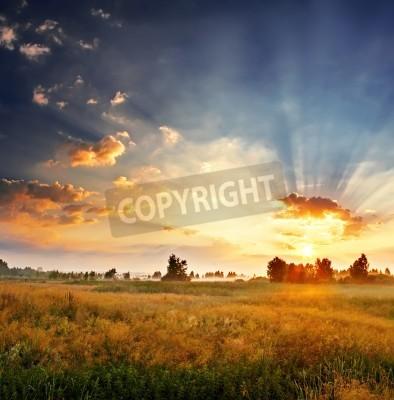 Fototapeta Krajobraz, słoneczny świt w polu