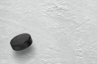 Fototapeta Krążek hokejowy na lodzie