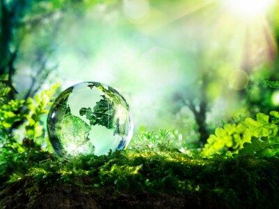 Fototapeta Kryształowy Globus na mchu w lesie - koncepcja środowiska