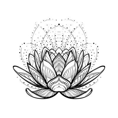Kwiat Lotosu Skomplikowane Stylizowane Liniowy Rysunek Na Białym