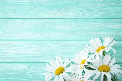 Fototapeta Kwiaty rumianku na miętowym drewnianym stole