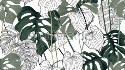 Fototapeta Kwiecisty bezszwowy wzór, zieleń, czarny i biały rozszczepiająca liść roślina Philodendron z winogradami na białym tle, pastelowy rocznika temat