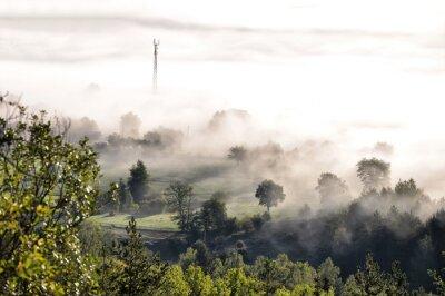 Fototapeta Las górski porannej mgły
