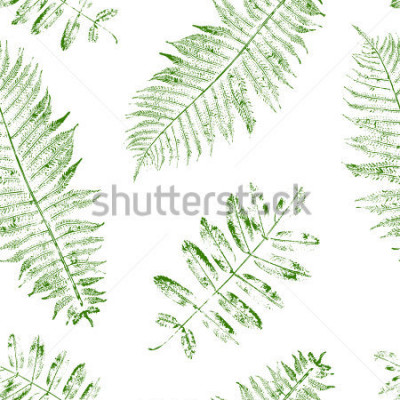 Fototapeta Leaves of mountain ash and fern. Seamless pattern with leaf prints. Vector illustration.