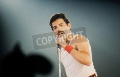 Fototapeta Leiden, Holandia - 27 listopada 1980: Freddy Merkury wokalista brytyjskiego zespołu Queen podczas koncertu w Groenoordhallen w Leiden w Holandii