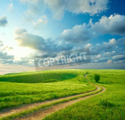 Fototapeta Letni krajobraz z zielonej trawie, drogowego i chmur