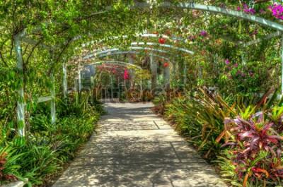 Fototapeta Łuk pokryty jasnymi kolorowymi kwiatami w ogrodzie botanicznym w Naples FL
