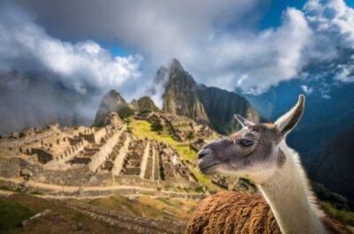 Fototapeta Machu Picchu, wpisanego na Listę Światowego Dziedzictwa UNESCO. Jednym z nowych siedmiu W.
