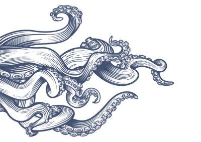 Fototapeta Macki ośmiornicy. Ręcznie rysowane ilustracji wektorowych w technice grawerowania na białym tle.