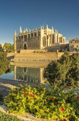 Fototapeta Majorka katedra