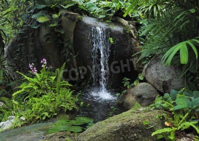 Fototapeta małe górskie wodospad w tropikalnej dżungli