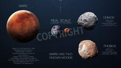 Fototapeta Mars - Wysoka rozdzielczość infografiki o planecie Układu Słonecznego i jego księżyców. Wszystkie planety dostępne.