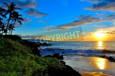 Fototapeta Maui Sunset Beach z palmami i liści