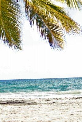 Fototapeta Mer, antyle, caraibes, tropiques ...