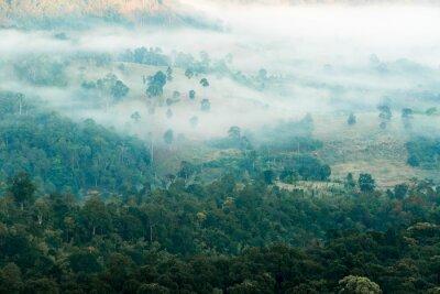 Fototapeta Mgła w dolinie