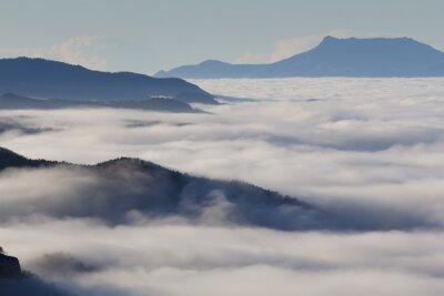 Fototapeta Mglisty krajobraz