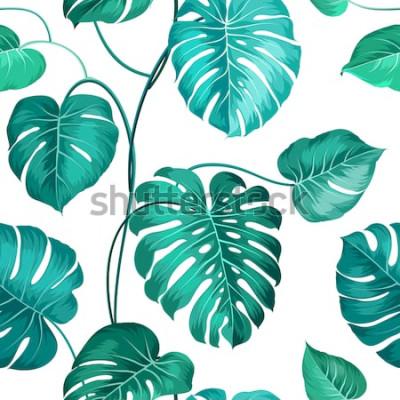 Fototapeta Miejscowe liście palmowe na białym, bezszwowym wzorze. Ilustracji wektorowych.
