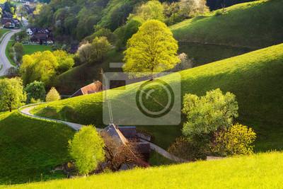 Fototapeta Miękkie malowniczych krajobraz lato z pięknych domów w górzystej dolinie. Niemcy, Schwarzwald, Muenstertal.