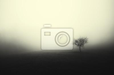 Fototapeta minimalne ciemne drzewa krajobraz we mgle