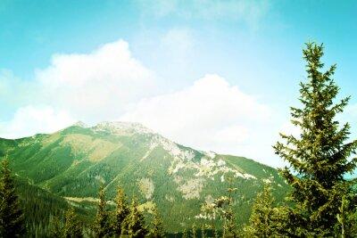 Fototapeta Natura w górach.