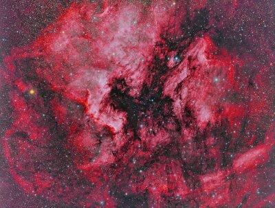 Fototapeta NGC 7000 Mgławica Ameryka Północna sfotografowana przez teleskop i naukowej kamery CCD