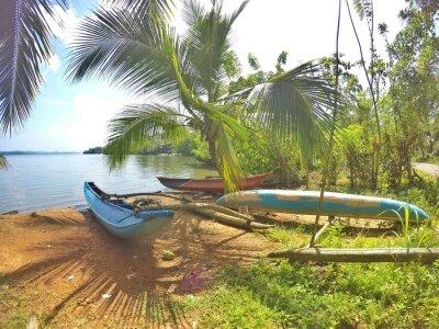 Fototapeta Niebieska katamaran znajduje się na pięknej plaży na tropikalnej wyspie Sri Lance