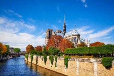 Fototapeta Notre Dame de Paris wzdłuż Sekwany
