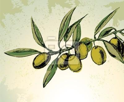 Oddział z zielonych oliwek