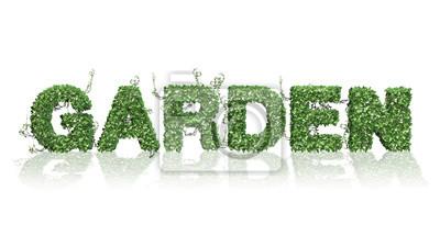 Fototapeta Ogród - logo z zielonych liści bluszczu - rozdzielone na białym BG