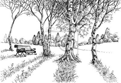 Ogród w rysunku światła słonecznego. ławka w parku