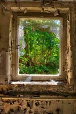 Fototapeta Okno do ogrodu