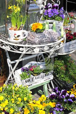 Okno sklep z kwiatami