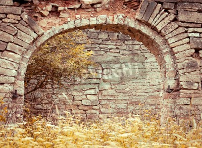 Fototapeta Old brick archway in the abandoned homestead