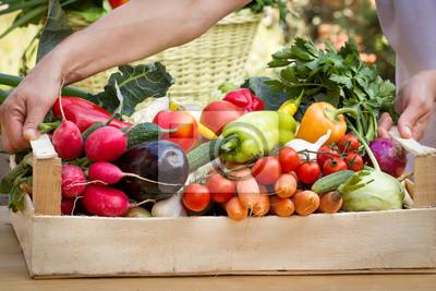 Fototapeta Organiczne warzywa na rękach (tworzenia)