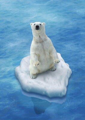 Fototapeta Ours Blanc / Fonte des glaces