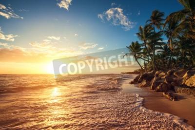 Fototapeta Palmy na tropikalnej plaży, sunrise strzale
