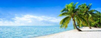 Fototapeta Panorama plaży w lecie